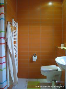 Douche en toilet van slaapkamer 1