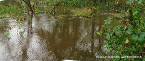 14 november 2010, hoog water bij de Mussenhoek